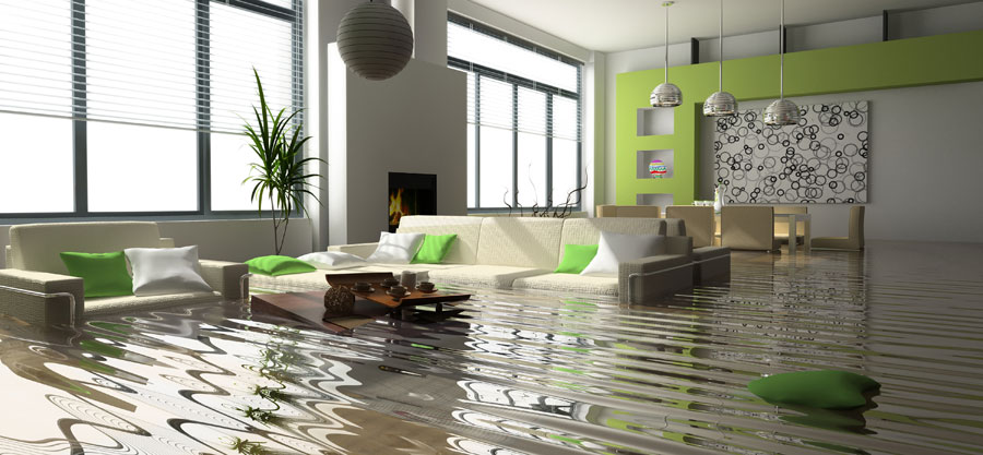 The Top 10 Reasons You Should Call A Water Damage Specialist