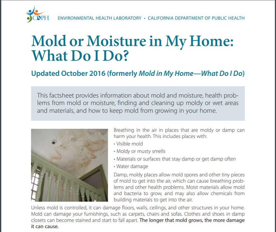 Mold or Moisture in My Home:  What do I do?